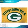 Carolina Panthers NFL Higher Quality Sports Flag (M-NF01F09036)