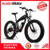 26inch Electric Mountain Bike with Fat Tire 48V 1000W 500W 3000W Fatbike Fat Bike Electric Bike