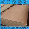 Wholesale Price to Africa Market Commercial Plywood