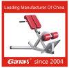 Ganas Fitness Equipment Adjustable Roman Chair for Sale (MT-6041)