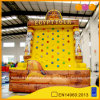 Inflatable Egyptian Tour Rock Climb (AQ01102)