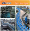 Pet Filled Bottle Conveyor System