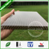 8mm 10mm 12mm Bronze Policarbonato Honeycomb Multiwall Hollow Sheets Price