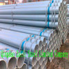 Seamless Steel Tube (Q235B, Q345B/C/D/E, Q420B/C/D/E, Q460C)
