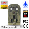 12MP Digital Waterproof 650nm Hunting Camera