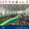 Good Quality Chain Plate Conveyor