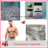 Muscle Building Steroid Powder Testosterone Cypionate Raw Material