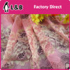 Colorful Attractive New Design Elastic Lace
