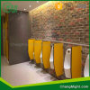 Professional Compact Laminate Washroom Partition System in China / HPL Board