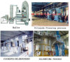 Teaseed / Carthamus Tinctorius Oil Equipment