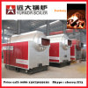 Dzh5-1.25 5t/H Biomass Steam Boiler