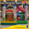 Children′s Wonderland Inflatable Castle for Party (AQ01716-1)
