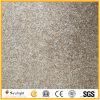 New G664 Popular Polished Chinese Granite Tiles/Slabs Paving Stone