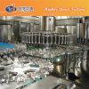 Mango Juice Beverage Production Line