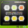 LED Lighting 12-36V High Power 10W-100W SMD COB LED Chip