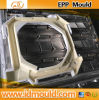 EPP, EPS, Epo, EPE Injection Mould/Mold/Molding