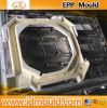 EPP, EPS, Epo, EPE Injection Mould/Mold/Molding