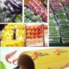 Plastic Wrap PVC Cling Film with Fruits