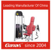 Mt-6013 Ganas Commercial Indoor Seated Biceps Curl Machine for Heavy Duty