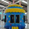 Inflatable Bouncer for Birthday Party