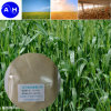 Trace Element Amino Acid Chelate for Spraying Fertilizer