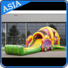 Outdoor Giant Inflatable Girl Princess Slide for Birthday