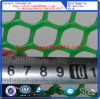 Plastic Mesh-Direct Factory