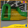 Hot Sale Giant Slide Inflatable Jumping Slide (AQ09239)