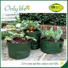 Onlylife PE Fabric Homegrown Organic Gardening Vegetables Grow Bag