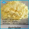 99% Good Quality Powder Methyltrienolone