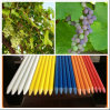 Flexible Fiberglass Plastic Plant Pole/Staking/Rods