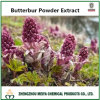China Origin Butterbur Powder Extract with 15% Sesquiterpenes (Petasin+Isopetasin+S-Petasin)