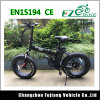 350W 20inch Fat Tire Beach Cruiser Electric Fat Bike
