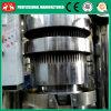 Professional Factory Price Almond Hydraulic Oil Press Machine