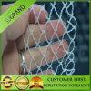New Design and High Quality Bird Net