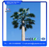Tapered Camouflaged Telescopic Antenna Palm Tree Telecom Mast Tower