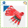 2016 Various Full Color Heat Transfered Printed Lanyard (JP-L017)