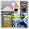 Anabolic Steroid Injection Cypoject 250/Testosterone Cypionate for Muscle Gain
