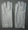 Light Weight Cotton Working Glove (2113)