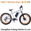 Attractive Well-Build Upscale Fat Tire Mountain E Bike