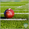 Durable Monofilament Waterproof Rugby Artificial Synthetic Grass