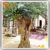 High Imitation Artificial Olive Wood Tree Dry Tree for Decoration