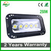 Good Quality Outdoor 250W Project LED Floodlight