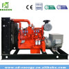 500kw Experienced Manufacturer for Biomass Gas Generator