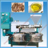 Castor Oil Extraction Machine with High Production