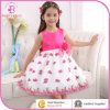 Embroider Flower Girl Party Dress, Kids Wear Wedding Dress