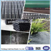 PP Woven Ground Cover/Horticulture Textiles/Landscapefabric Professional Supplier