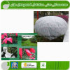 UV Resistant SBPP Spunbond Non Woven Fabric for Agriculture