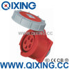 Three Phase Flush Mounted Socket for Waterproof Application (QX-234)