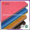 Sanhong Manufacture 20-50mm Thick Matial Arts EVA Tatami Gymnastics Judo Mats for Sale